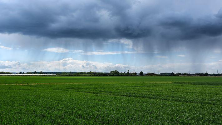 Chuva campo